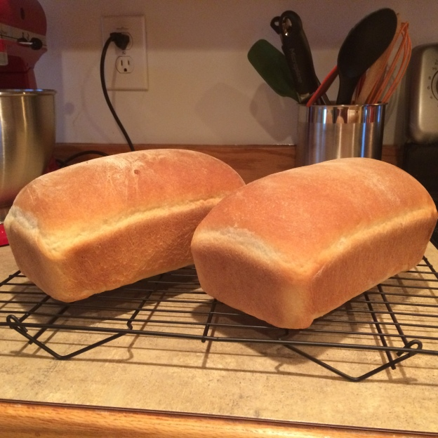 Finished Sandwich Bread