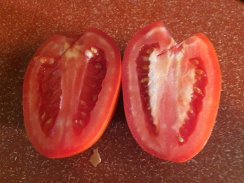 Seeded and Unseeded Tomato
